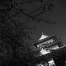 Tower Of Odawara Castle @ Kanagawa