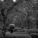 Walking In The Rain @ Ishikawa