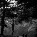 Figures Walking In The Park @ Tokyo