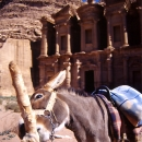 Donkey And The Monastery @ Jordan