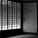 Sliding Paper Door @ Kanagawa