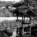 Wooden Bridge In Sankeien Garden