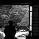 Man Watching The Japanese Garden @ Tokyo