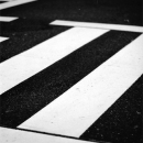 White Lines In The Crossing @ Tokyo
