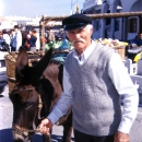 Man With A Gorgeous Mustache And Donkey @ Greece