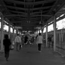 Platform Of Nakano Station @ Tokyo