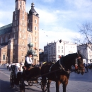 Carriage And St. Mary's Basilica In Kraków @ Poland