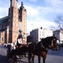 Carriage And St. Mary's Basilica In Kraków