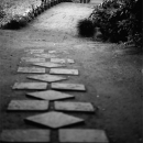 Path In Rikugien Garden @ Tokyo