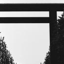 Great Gate In Yasukuni Jinja