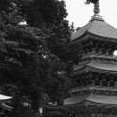 Three-storied Pagoda In Naritasan Shinsho-Ji