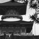 Big Pagoda In Naritasan Shinsho-ji