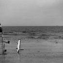 材木座海岸のライフセーバー