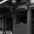 Boy And Girls In Front Of The Gate Of Hie Jinja @ Tokyo