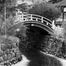Bridge And Creek In Shimogamo Jinja