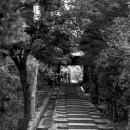 Stairs In Kodai-ji @ Kyoto