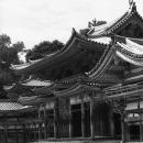 Phoenix Hall @ Kyoto