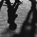 Shadows Of Pedestrians @ Tokyo