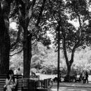 Calling In Lu Xun Park