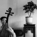 Woman Playing Chinese Lute In Lingering Garden