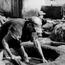 Man Working In The Tanning Pit