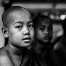 Little Monk Wearing Kasaya