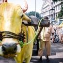 プネーの黄色い牛