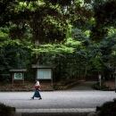 Woman Walking The Approach Of Meiji Jingu