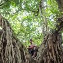 木の上の男の子