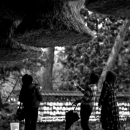 People Under The Thick Rope In Izumo Taisha