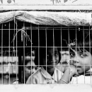 School Kids In The Cage