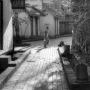 Young Monk In The Lane