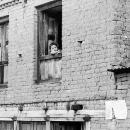 Little Kid By The Window