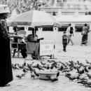 Woman And Pigeons