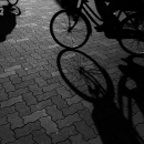 Two Shadows Of Bicycles