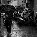 Checkered Shirt And Checkered Umbrella