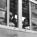 開いていたバスの窓