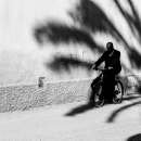 Bicycle In The Shadow Of A Palm Tree