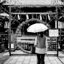 五條天神社の茅の輪