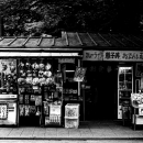 Old-fashioned Shop In Ueno Park