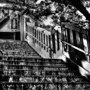 Staircase In Moto-Mishima Jinja