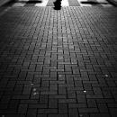 横断歩道のシルエット