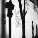 壁に浮かぶ影たち