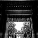 神門の向こうに拝殿