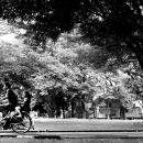 走り去る自転車