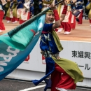 Woman Waving A Flag