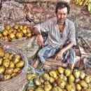 Heap Of Mangoes And A Man