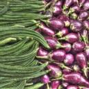 Okra And Eggplant @ India