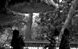 People Under The Thick Rope In Izumo Taisha