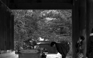 Woman Praying At Izumo Taisha